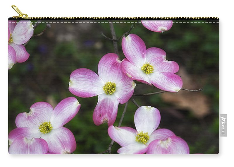 Pink Dogwood Carry-all Pouch featuring the photograph Pink Dogwood Mo Bot Garden Dsc01756 by Greg Kluempers