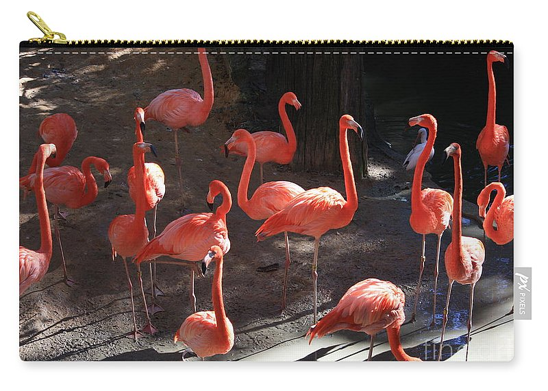 Pink Flamingos Carry-all Pouch featuring the greeting card Pink Flamingos by Carol Groenen