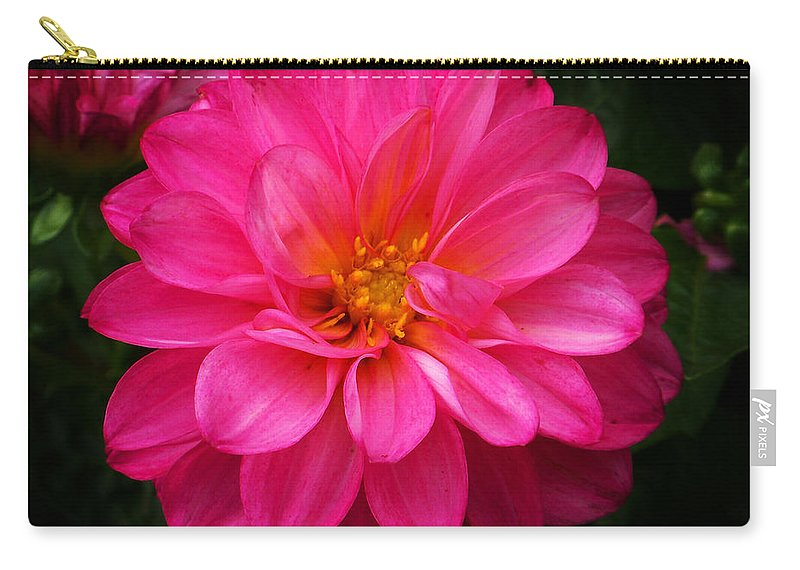 Flower Carry-all Pouch featuring the photograph Pink Flower by Anthony Jones