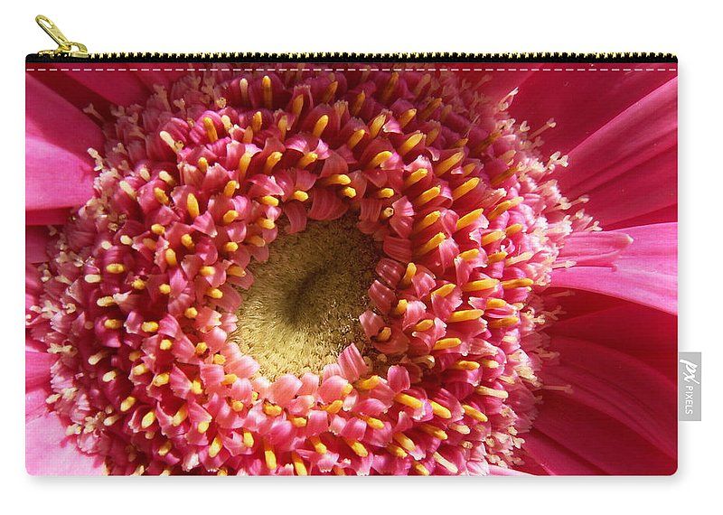 Pink Carry-all Pouch featuring the photograph Pink Gerbera Daisy by Amy Fose