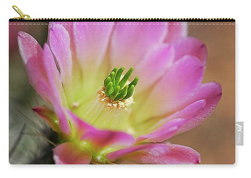 Arizona Carry-all Pouch featuring the photograph Pink Hedgehog Cactus by Saija Lehtonen