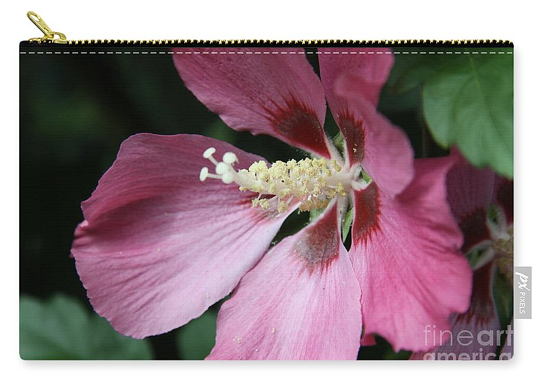 Hibiscus Carry-all Pouch featuring the photograph Pink Hibiscus Cose -up by Christiane Schulze Art And Photography