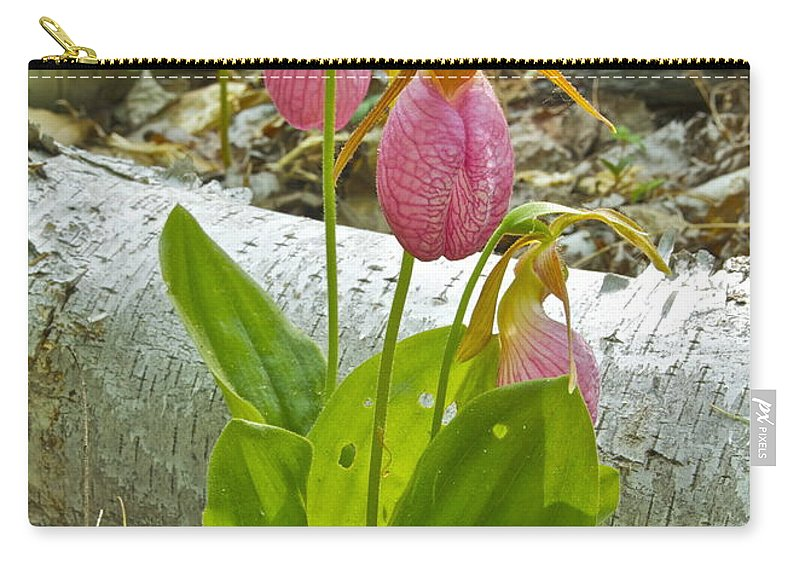 Wildflower Carry-all Pouch featuring the photograph Pink Lady Slipper by Michael Peychich