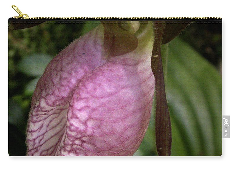 Flowers Carry-all Pouch featuring the photograph Pink Lady Slipper by Nancy Griswold