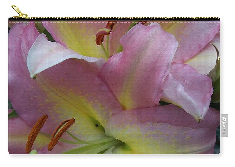 Flowers Carry-all Pouch featuring the photograph Pink Lillies by Anita Burgermeister