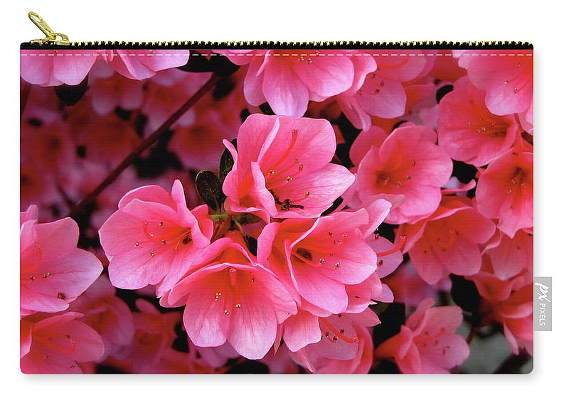 Flowers Carry-all Pouch featuring the photograph Pink by Martin S Gold