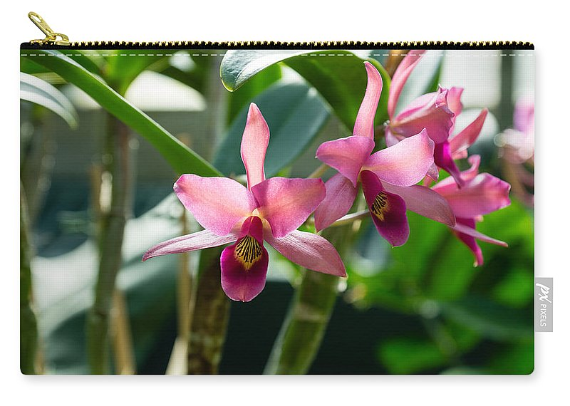 Georgia Mizuleva Carry-all Pouch featuring the photograph Pink Orchids - Exotic Tropical Glow by Georgia Mizuleva