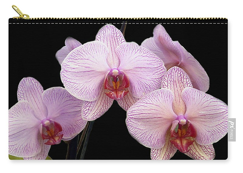 Flowers Carry-all Pouch featuring the photograph Pink Orchids by Kurt Van Wagner