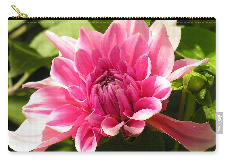 Pink Carry-all Pouch featuring the photograph Pink Pedals by Diane Greco-Lesser