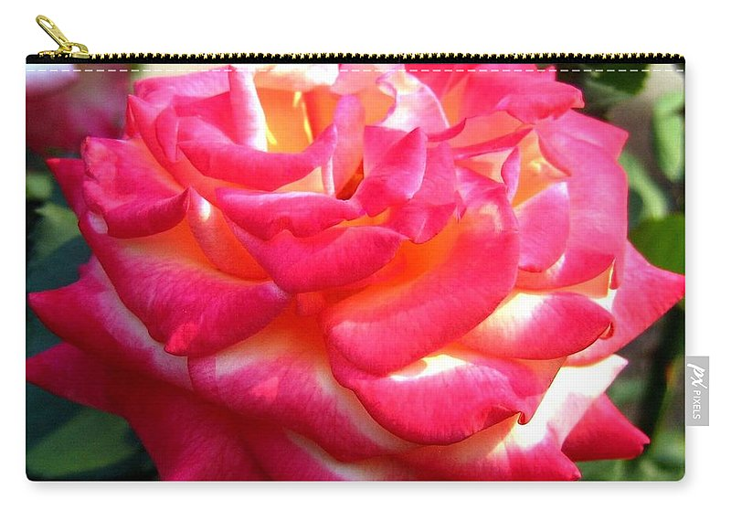 Rose Carry-all Pouch featuring the photograph Pink Perfection by Will Borden