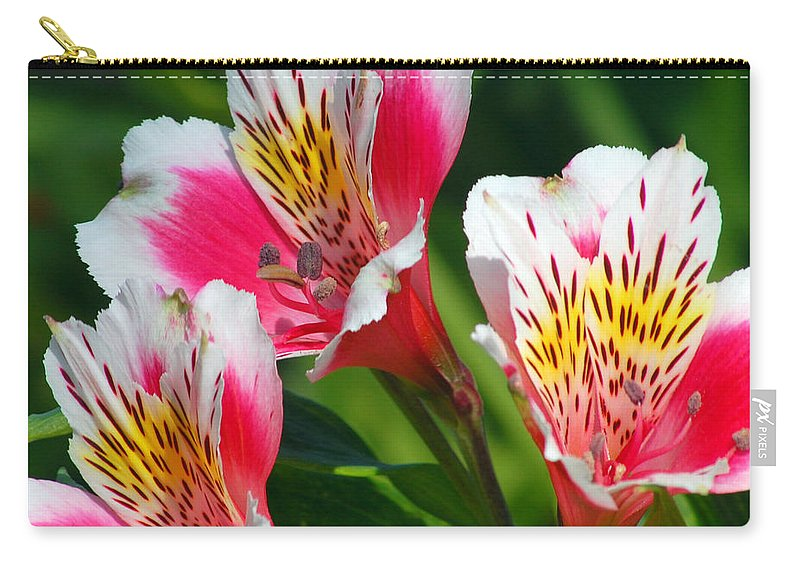 Peruvian Carry-all Pouch featuring the photograph Pink Peruvian Lily 2 by Amy Fose