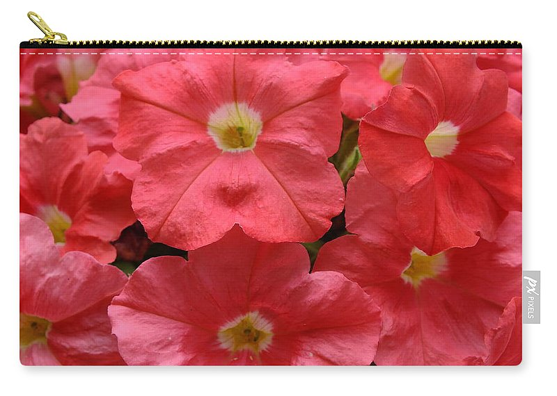 Petunia Carry-all Pouch featuring the photograph Pink Petunias by Sheli Kesteloot