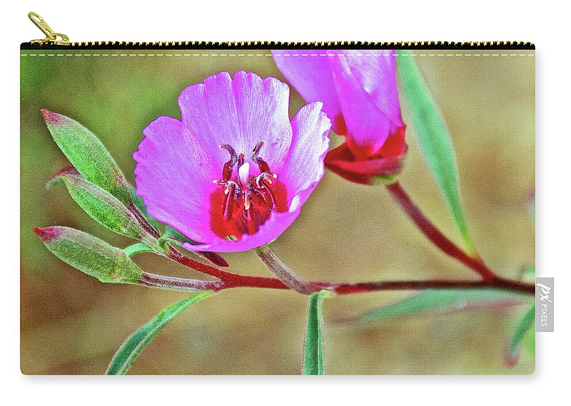 Pink Poppies In Rancho Santa Ana Botanic Garden In Claremont Carry-all Pouch featuring the photograph Pink Poppies In Rancho Santa Ana Botanic Garden In Claremont-california by Ruth Hager