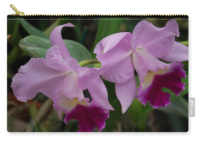 Macro Carry-all Pouch featuring the photograph Pink Purple Orchids by Rob Hans