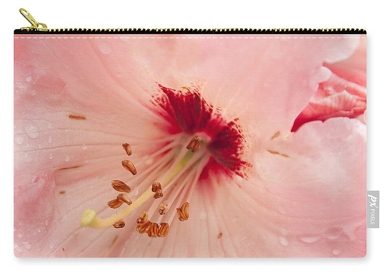 Pink Carry-all Pouch featuring the photograph Pink Rhododendron by Steven Natanson