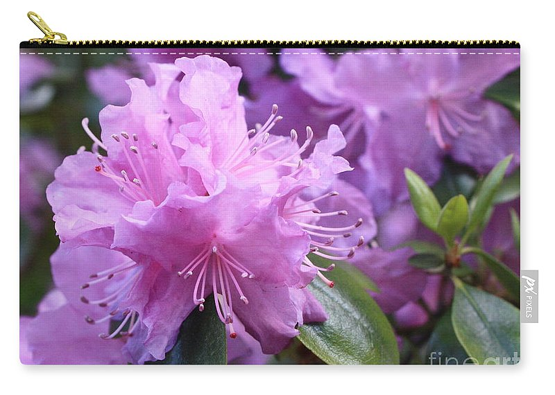 Flower Carry-all Pouch featuring the photograph Light Purple Rhododendron With Leaves by Carol Groenen