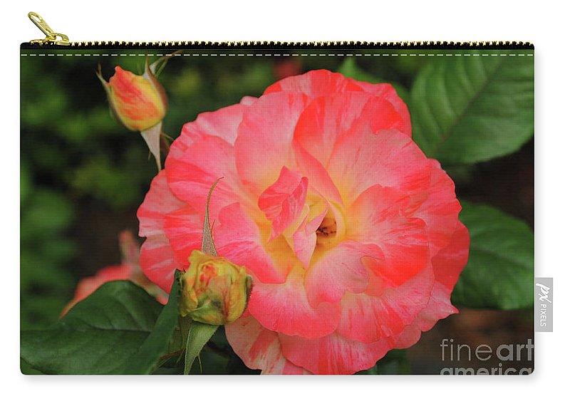 Rose Carry-all Pouch featuring the photograph Pink Rose by Alicia Espinosa