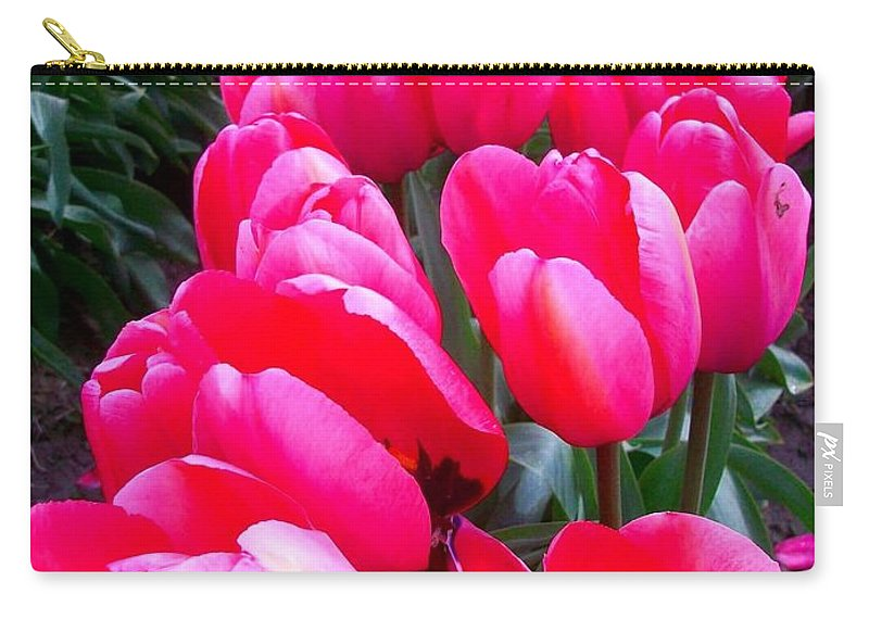 Pink Tulips Carry-all Pouch featuring the pyrography Pink Tulips by Amber Carpenter
