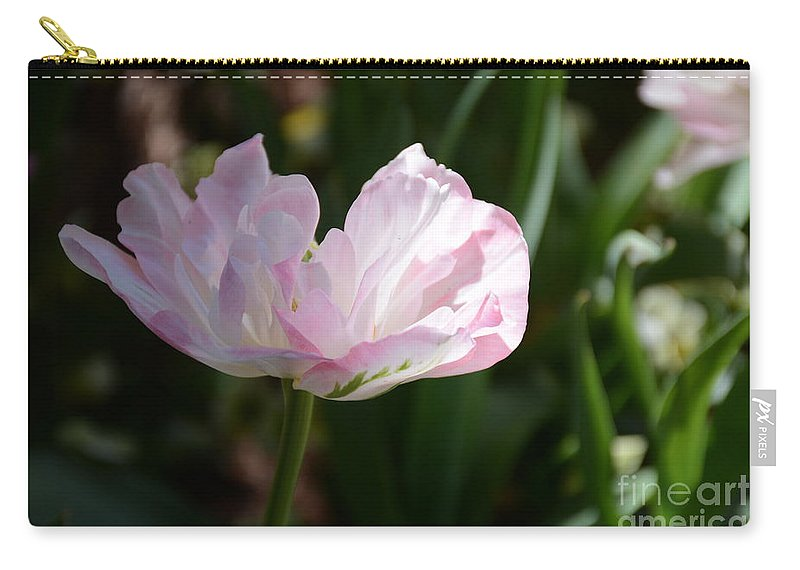Flower Carry-all Pouch featuring the painting Sun Kissed Flower by Constance Woods