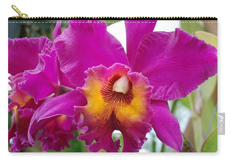 Macro Carry-all Pouch featuring the photograph Pinkishyellow Orchid by Rob Hans