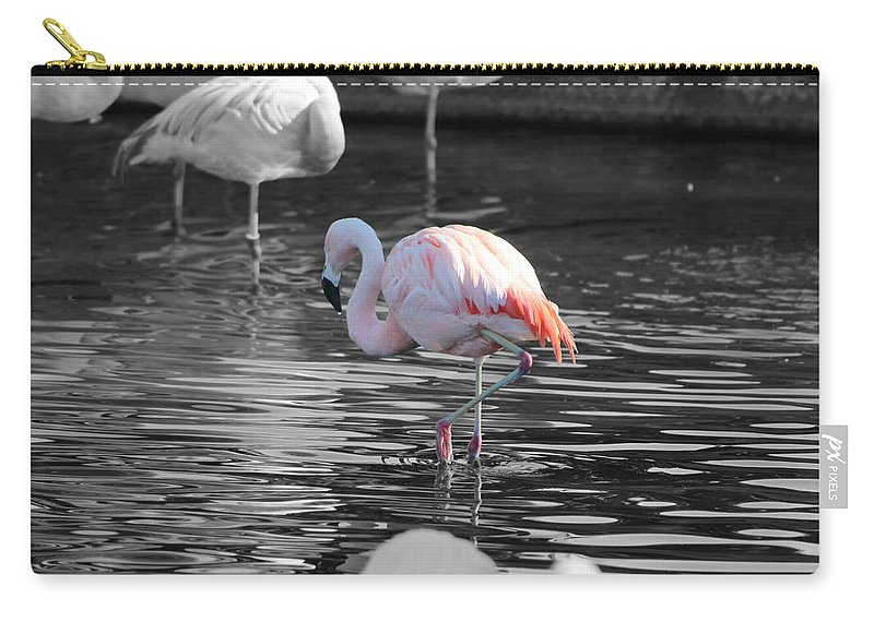 Palm Desert California Carry-all Pouch featuring the photograph Pinky by Colleen Cornelius