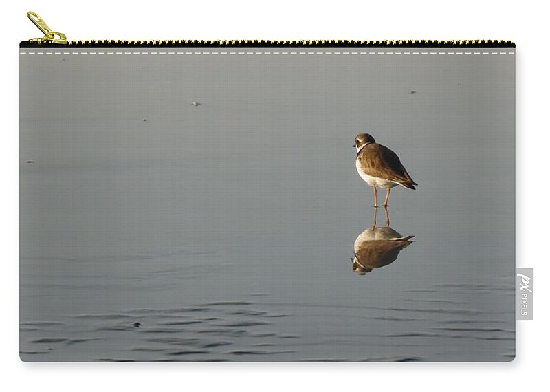 Birds Carry-all Pouch featuring the photograph Pipping Plover by Julie Houle