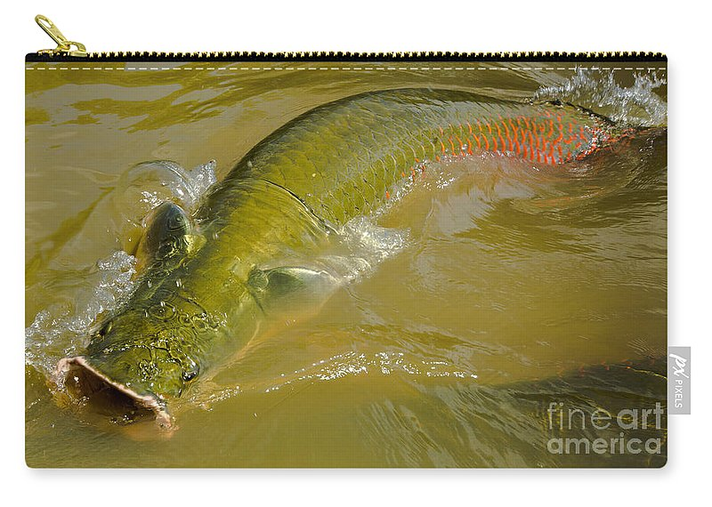 Arapaima Carry-all Pouch featuring the photograph Pirarucu Or Arapaima by Dant� Fenolio