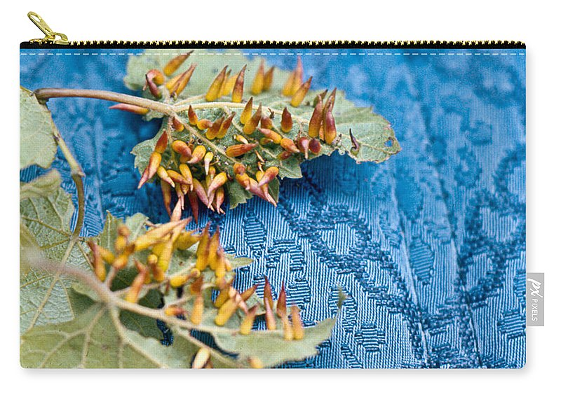 Plant Carry-all Pouch featuring the photograph Plant Galls by Douglas Barnett