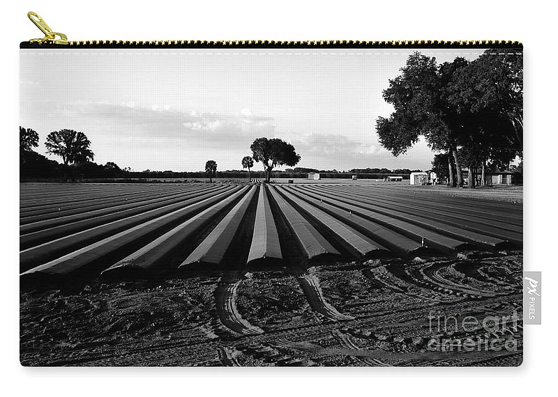 Farming Carry-all Pouch featuring the photograph Planted Fields by David Lee Thompson