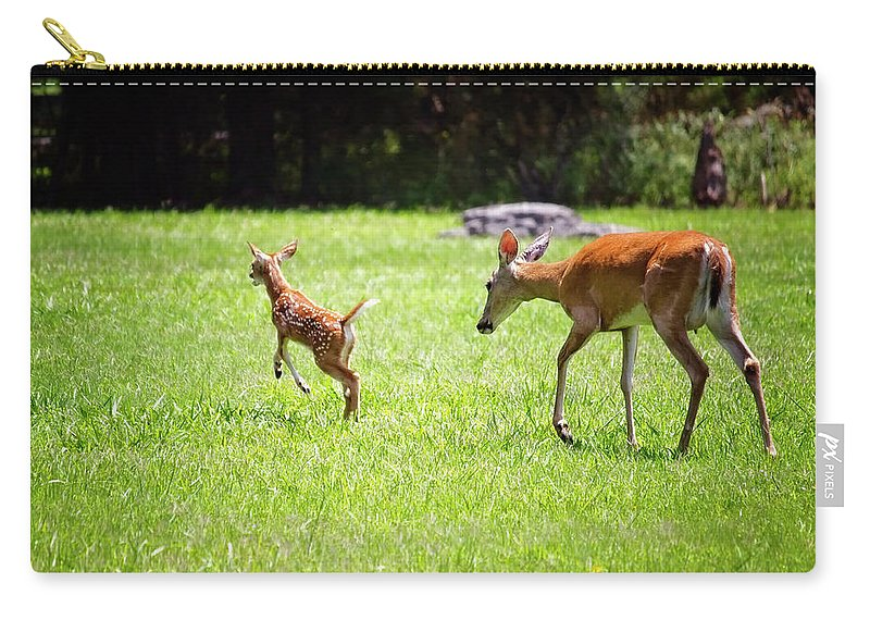 Fawn Carry-all Pouch featuring the photograph Playtime by Laura Vilandre