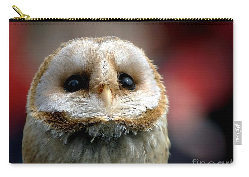 Wildlife Carry-all Pouch featuring the photograph Please by Jacky Gerritsen