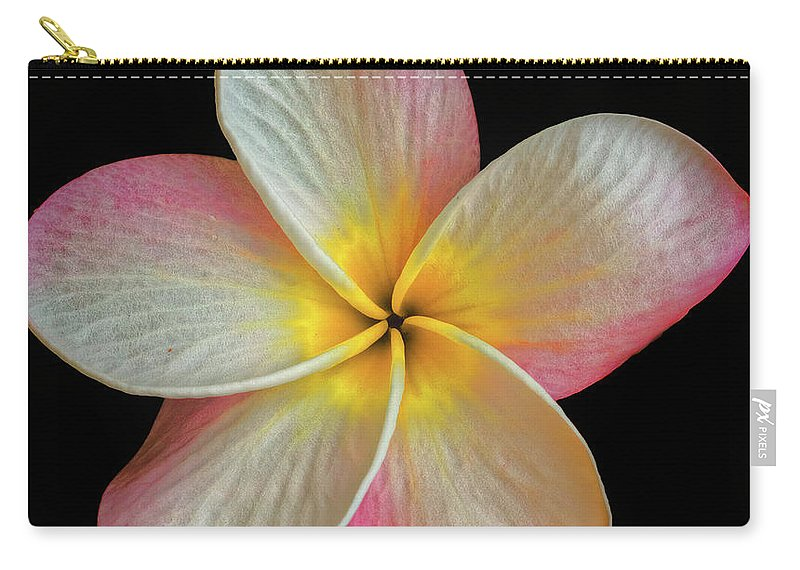 Plumeria Flowers Carry-all Pouch featuring the photograph Plumeria Flower On Black by Mitch Shindelbower