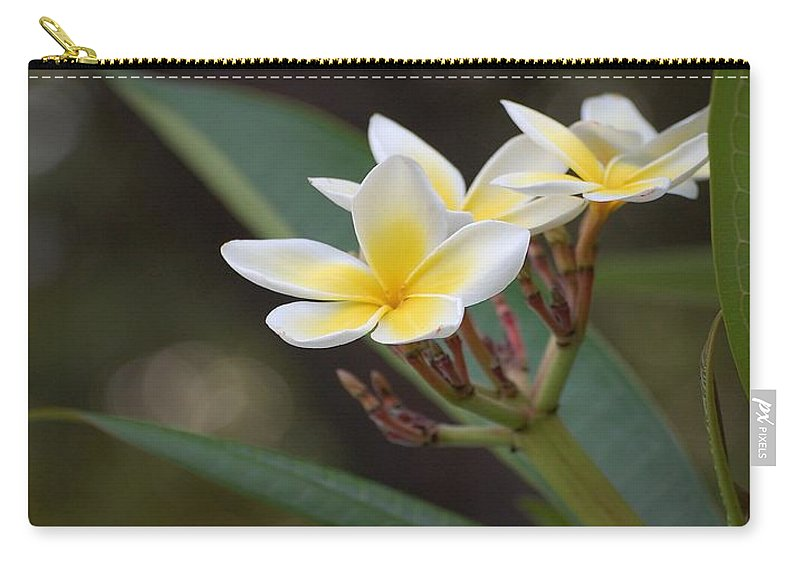 Plumeria Carry-all Pouch featuring the photograph Plumeria II by Robert Meanor