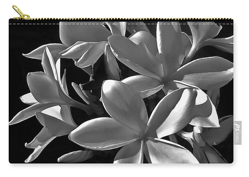 Photograph Of Plumeria Carry-all Pouch featuring the photograph Plumeria Proper Evening by Gwyn Newcombe