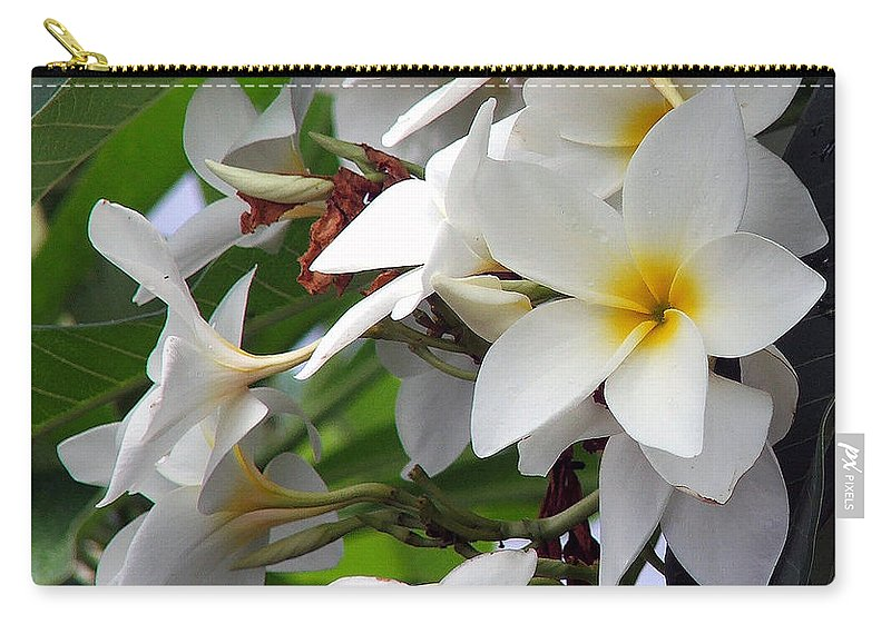 Flower Carry-all Pouch featuring the photograph Plumeria by Robert Meanor
