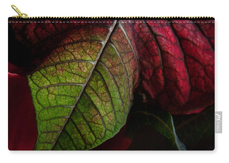 atat�rk Flower Carry-all Pouch featuring the photograph Poinsettia by Ann Garrett