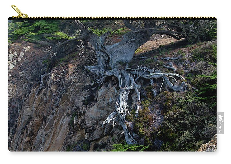 Landscape Carry-all Pouch featuring the photograph Point Lobos Veteran Cypress Tree by Charlene Mitchell