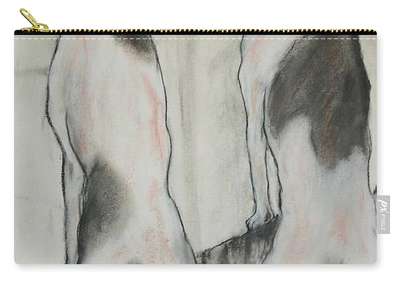 Pastel Carry-all Pouch featuring the drawing Point Of View by Cori Solomon