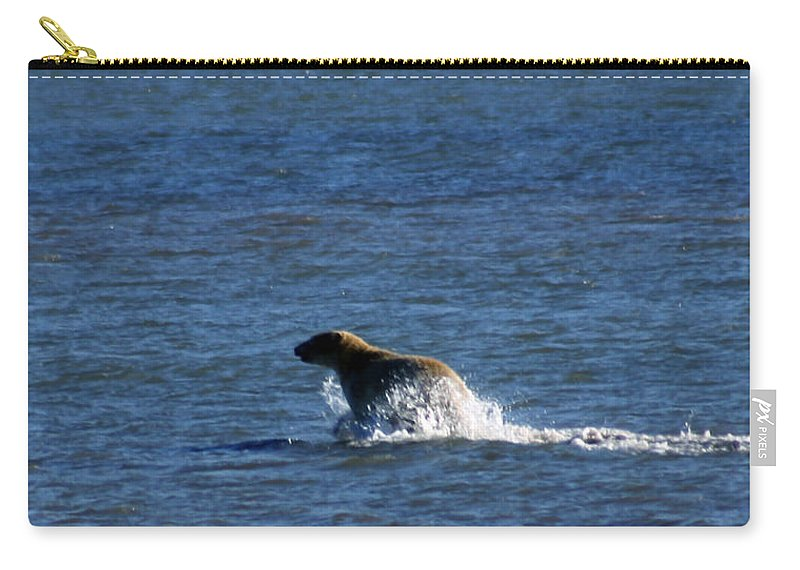 Bear Carry-all Pouch featuring the photograph Polar Bear by Anthony Jones