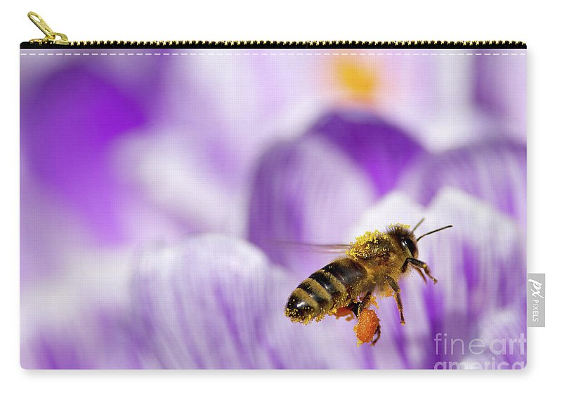 Honeybee Carry-all Pouch featuring the photograph Pollen Collector by Sharon Talson