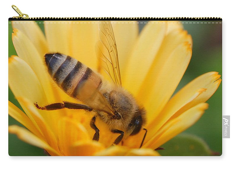 Bee Carry-all Pouch featuring the photograph Pollination 2 by Amy Fose