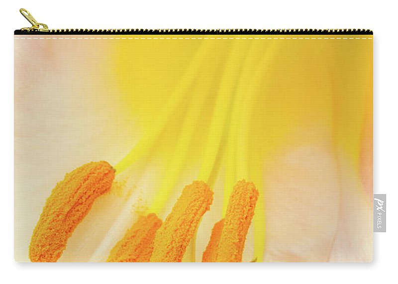 Lily Show 2017 Carry-all Pouch featuring the photograph Pollinator's Heaven by Marilyn Cornwell