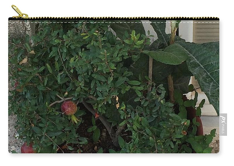 Pomegranate Tree Carry-all Pouch featuring the digital art Pomegranate In The Pot Greece by Viktoriya Sirris