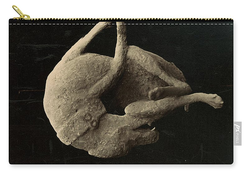Archaeology Carry-all Pouch featuring the photograph Pompeii: Plaster Cast by Granger