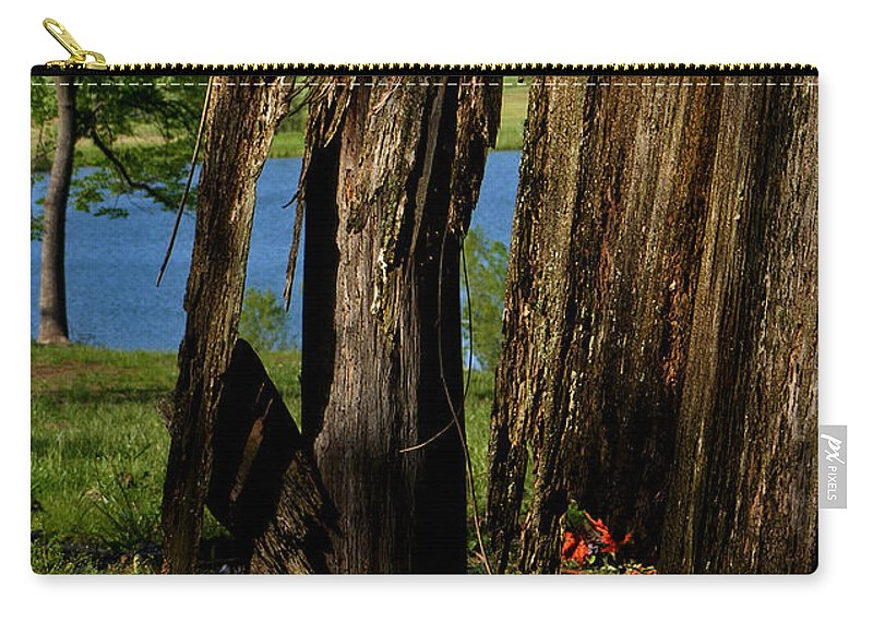 Landscape Carry-all Pouch featuring the photograph Pond Fragments by Rachel Christine Nowicki