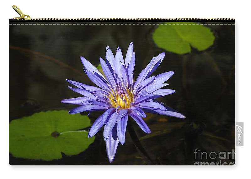 Pond Lily Carry-all Pouch featuring the photograph Pond Lily by David Lee Thompson