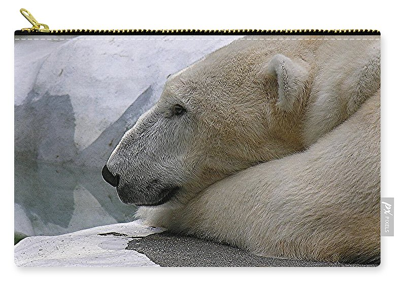 Pola Carry-all Pouch featuring the photograph Pondering Pola by Diane Greco-Lesser