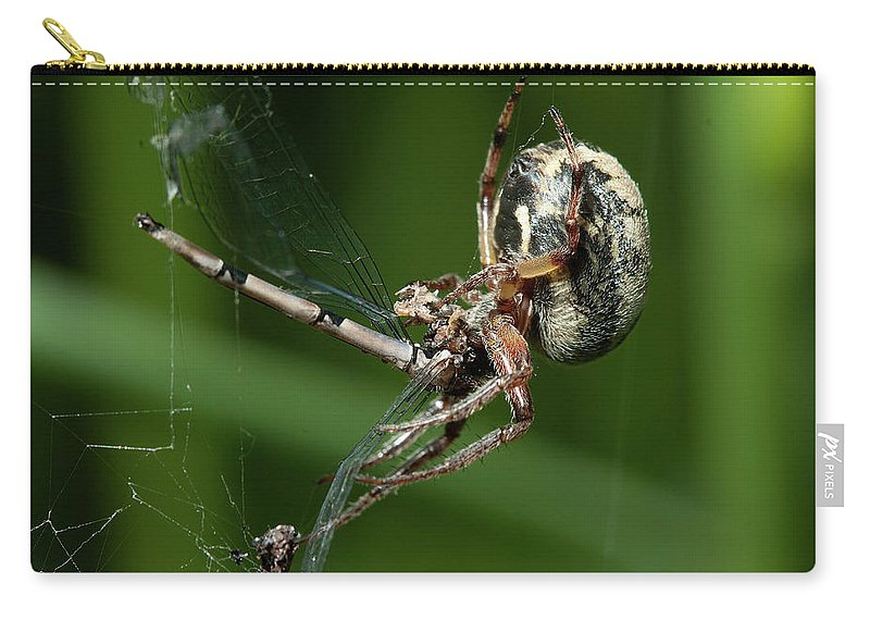 Spider Carry-all Pouch featuring the photograph Poor Damselfly by Bob Kemp