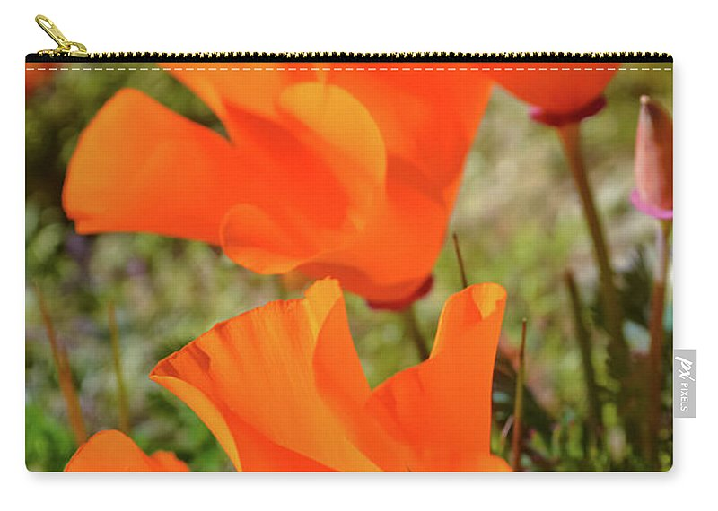 Antelope Valley California Poppy Reserve Carry-all Pouch featuring the photograph Poppies Antelope Valley by Kyle Hanson