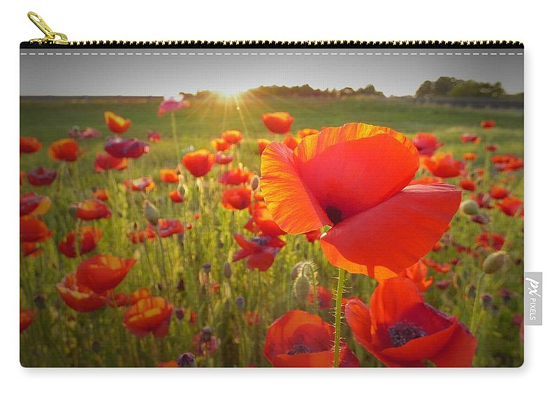 Nature Carry-all Pouch featuring the photograph Poppies At Sunset by Matt Taylor